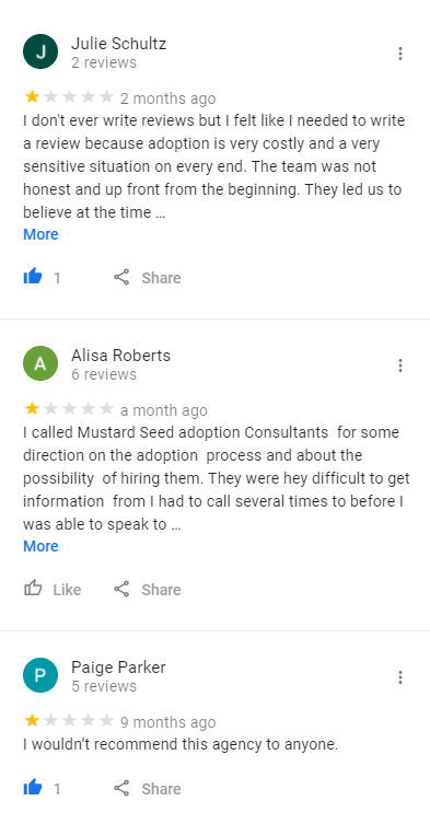 mustard seed adoption consultants reviews